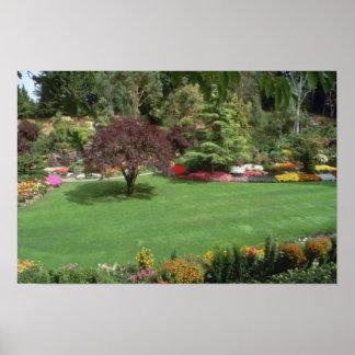 Rojo más flores de los jardines póster