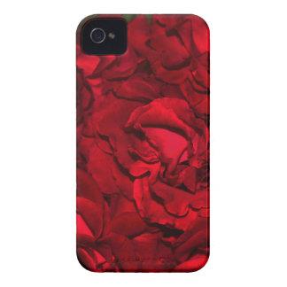 Rojo masivo iPhone 4 fundas