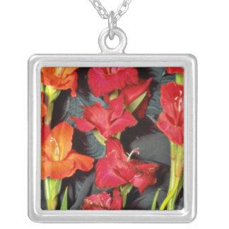Rojo, naranja y flores del gladiolo del escarlata colgante cuadrado