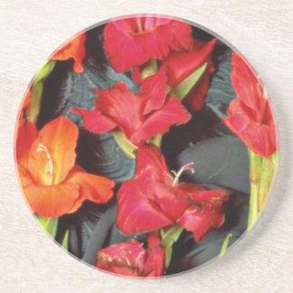 Rojo, naranja y flores del gladiolo del escarlata posavasos personalizados