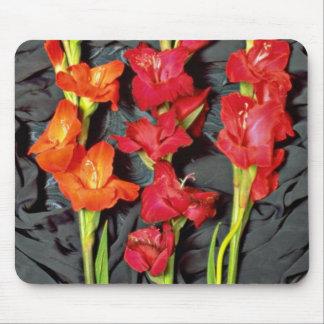 Rojo, naranja y flores del gladiolo del escarlata alfombrillas de ratones