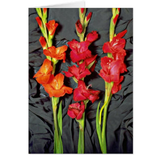 Rojo, naranja y flores del gladiolo del escarlata tarjeta de felicitación