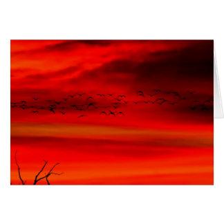 Rojo por la mañana tarjeta de felicitación