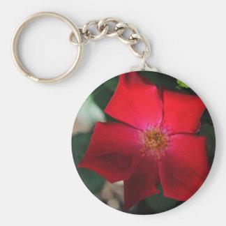Rojo rojo de la flor/de Flor Llaveros Personalizados