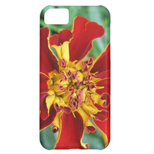 Rojo y amarillo carcasa iPhone 5C