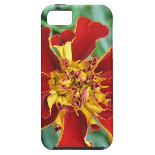 Rojo y amarillo iPhone 5 Case-Mate coberturas