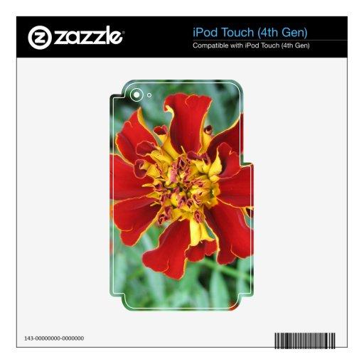 Rojo y amarillo iPod touch 4G calcomanías