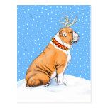 Rojo y blanco del reno del navidad del dogo postales