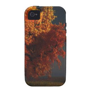Rojo y caja dura del oro (iPhone 4) Vibe iPhone 4 Carcasas