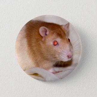Rolando Badge Pinback Button