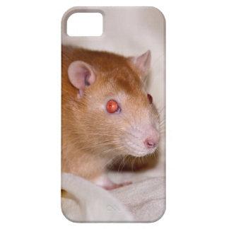 Rolando iPhone 5 Case