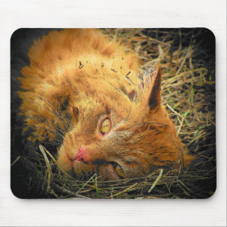 Roll in the Hay Mouse Pad