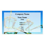 Roller Coaster Double-Sided Standard Business Cards (Pack Of 100)