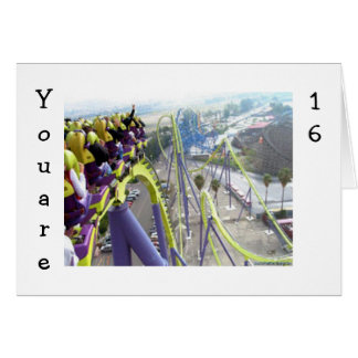 ROLLER COASTER THRILLS FOR THE 16 YEAR OLD GREETING CARD