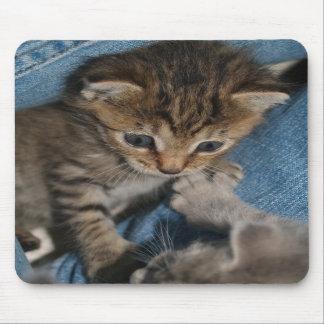 """Rollicking Kitten"" Mousepad"