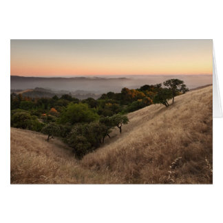 Rolling California hillside at sunset Card