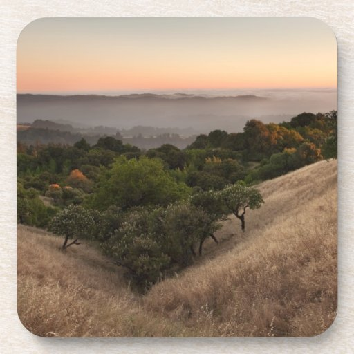 Rolling California hillside at sunset Beverage Coasters