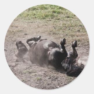 Rolling horse classic round sticker
