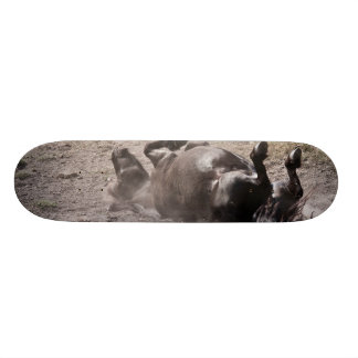 Rolling horse skateboard