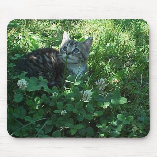 Rolling in Clover Mouse Pad