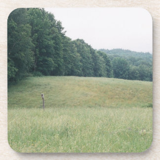 rolling meadow coaster