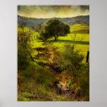 Rolling Oaks Print