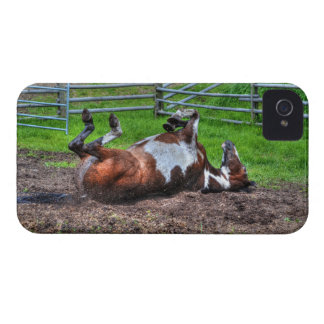 Rolling Paint Horse Equine Photo for Horse-lovers Case-Mate iPhone 4 Case