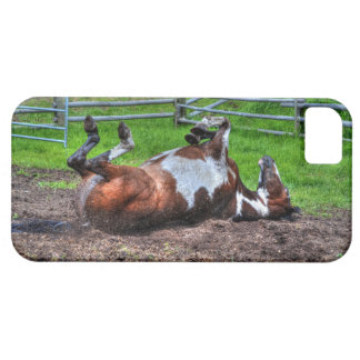Rolling Paint Horse Equine Photo for Horse-lovers iPhone SE/5/5s Case
