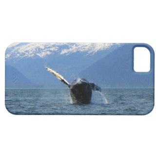 Rollo de barril del Humpback iPhone 5 Carcasa