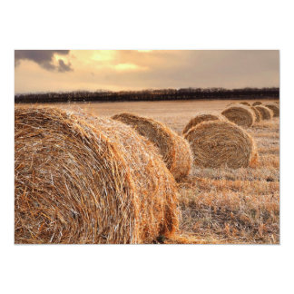 Rolls of Hay Personalized Invitation