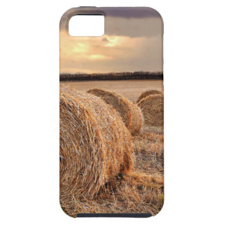 Rolls of Hay iPhone SE/5/5s Case