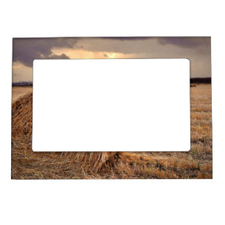 Rolls of Hay Magnetic Photo Frame
