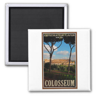 Roma - Colosseum de la colina de Palatine Imán Cuadrado