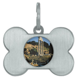 Roma Foro Romano 1956 Placas Mascota