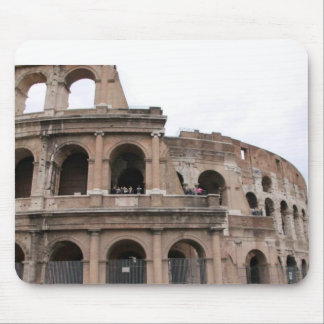 ROMA TAPETE DE RATONES