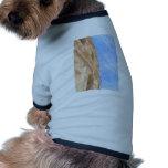 Roman Ampitheatre Pet Tshirt