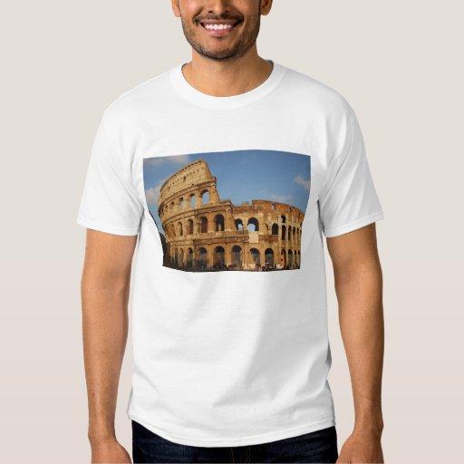 Roman Art. The Colosseum or Flavian 4 Tshirt