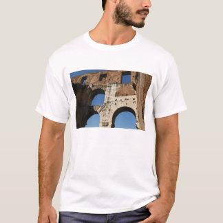 Roman Art. The Colosseum or Flavian 5 T-Shirt