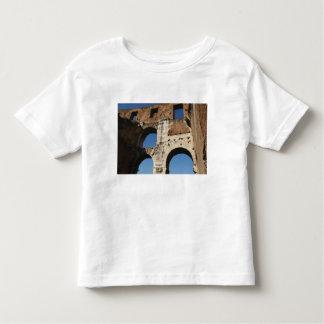 Roman Art. The Colosseum or Flavian 5 Toddler T-shirt