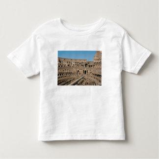 Roman Art. The Colosseum or Flavian 6 Toddler T-shirt