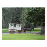 Roman Candy Cart Print