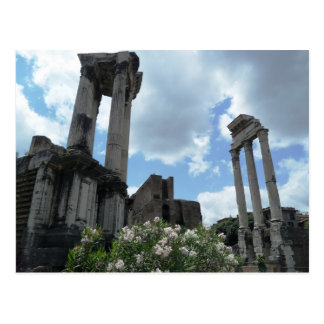 Roman Columns Rome Italy Monuments Ancient Postcard