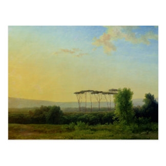 Roman Countryside Postcard