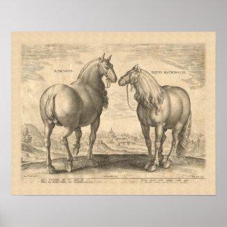 Roman Horses Antique Print