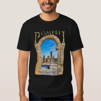Roman Ruins of Ancient Pompeii T-Shirt