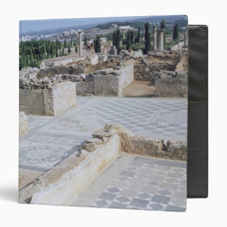 Roman ruins of the port of Emporion 3 Ring Binder