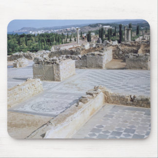 Roman ruins of the port of Emporion Mouse Pad