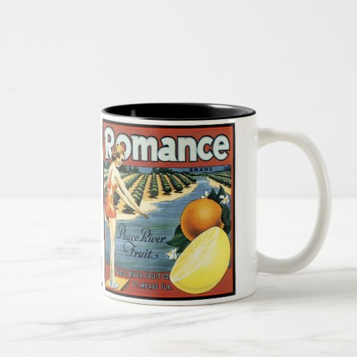 Romance Brand Peace River Fruit Two-Tone Coffee Mug