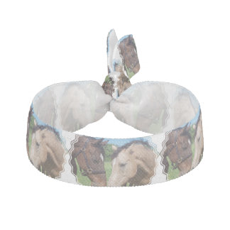 Romance del caballo elástico para el pelo