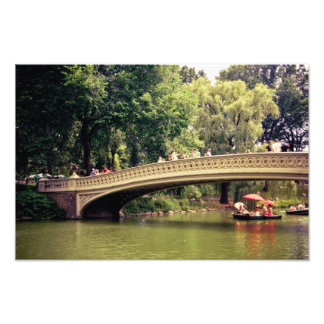 Romance del Central Park - puente del arco - New Y Cojinete